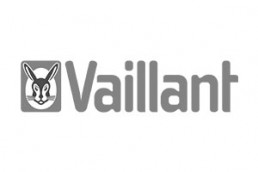 Vaillant logotipo